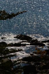 Newfoundland coast, Avalon Peninsula. Canada. 27 June 2015