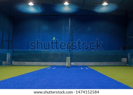 newly opened cricket indoor stadium #1474152584