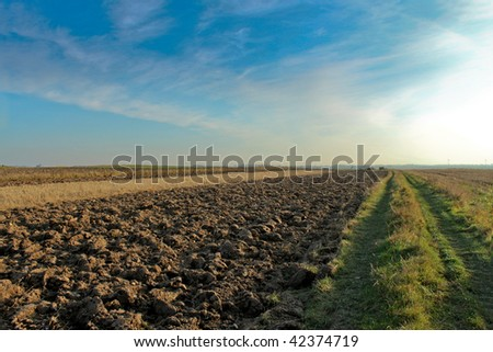 Newly ploughed field in the late summer, country landscape.