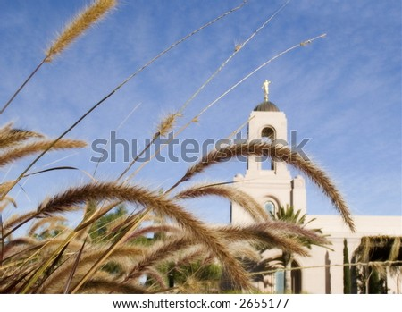 Newport Beach Temple with Grass