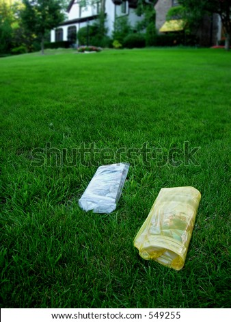 Newspapers on lawn