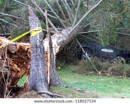 NEWTOWN, CONNECTICUT USA - OCTOBER 29:Aftermath of Hurricane Sandy toppling a tree on to a vehicle in Newtown, Connecticut on October 29, 2012
