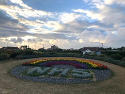 NHS flower tribute in Southsea