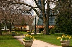 Niagara Falls Greenhouse 3