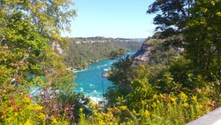 Niagara Falls, Ontario, Canada. Looking over the water from the road above. Amazing view. Gorgeous day. Taken in 2017.  Wild water. Bright blue water and bright vibrant green foliage. Vibrancy.