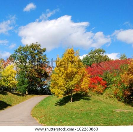 Niagara Falls Park Fall Season Trees, USA