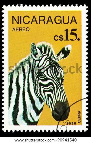 NICARAGUA - CIRCA 1986: a stamp printed by Nicaragua shows Zebra, series animals, circa 1967