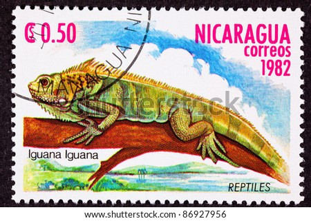 NICARAGUA - CIRCA 1982:  A stamp printed in Nicaragua shows a green lizard, Iguana iguana hanging out on a branch above a marsh, circa 1982.