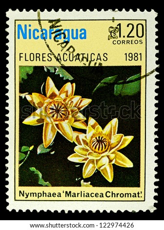 """NICARAGUA - CIRCA 1981: A stamp printed in Nicaragua shows a Water Lillie, with the inscription """"Nymphaea Marliacea Chromat"""", from the series """"Aquatic flowers"""", circa 1981"""