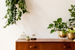 Nice and retro space of home interior with  vintage cupboard with elegant gold accessories, a lot of plants in stylish pots. Cozy home decor. Minimalistic concept. Home garden. Copy space. Template