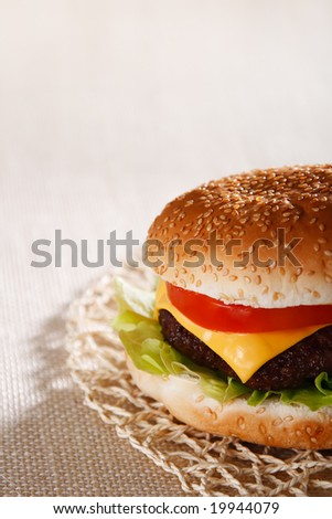 nice and simple beef cheese burger, shallow DOF - stock photo