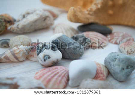 Nice background with a side view stones and seashells. Colorful picture. Natural beauty close-up. Decorative elements.