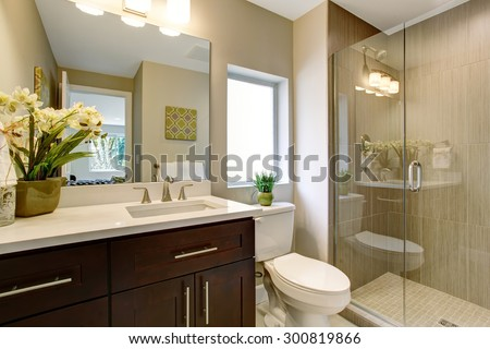 Nice bathroom with glass shower, and small plants as decor.
