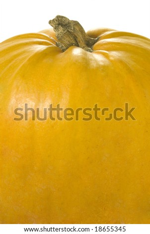 nice closeup of the big orange pumpkin over white with clipping path