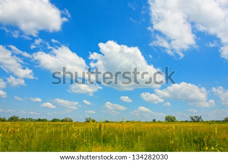 Nice clouds over meadow in summer steppe