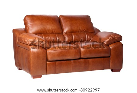 Nice  comfortable and luxury design of leather sofa