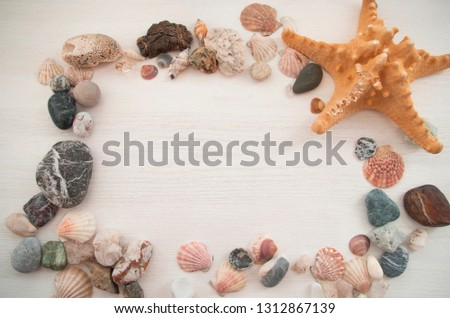 Nice decorative frame with a lot of shells, colorful stones and a brown starfish. Bright picture. Close-up. The top view. Natural background.