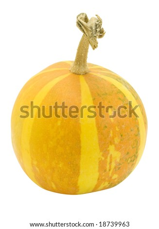 nice decorative orange pumpkin with orange stripes isolated over white with clipping path