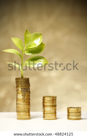 Nice fresh leaf is growing from coins