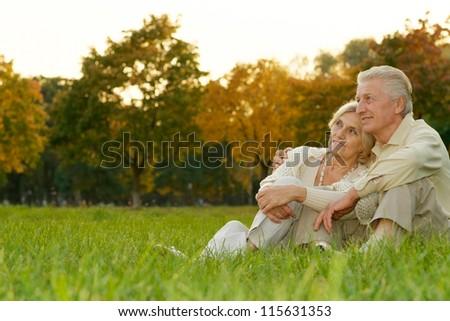 nice happy couple sitting at autumn park