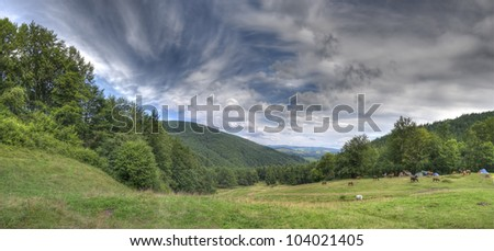nice herd of horses on mountains meadow
