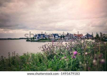 Nice houses with the nice flowers