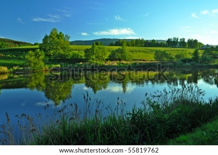 nice landscape on summer day