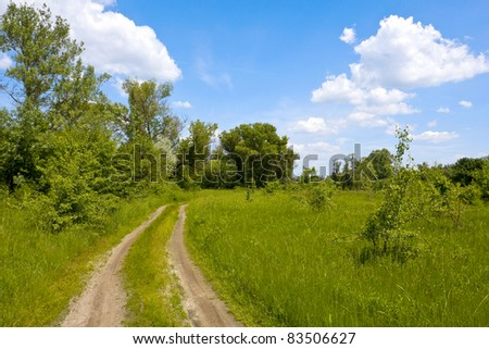 Nice landscape with rural road in steppe