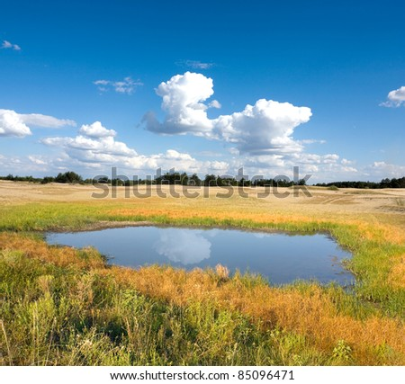 Nice landscape with small lake in steppe