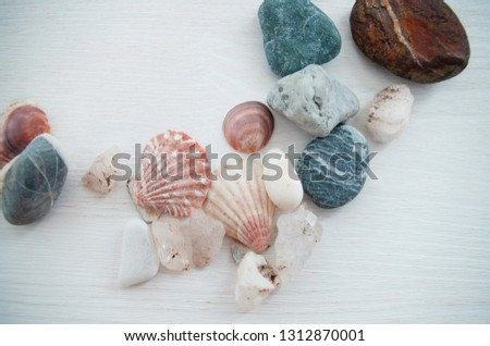 Nice light background with a lot of colorful stones and with several seashells. Bright picture. Close-up. The top view.