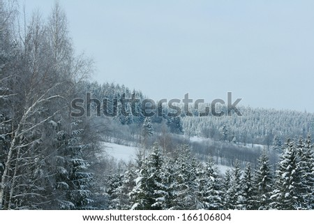 Nice mountain forest with a lot of snow in winter #166106804