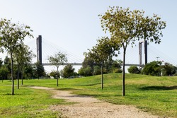 Nice park with large areas of green grass and dirt roads that is under the Fifth Centennial Bridge in Seville (Andalusia, Spain). Quiet place to sunbathe, walk the dog, go for a run or read a book.