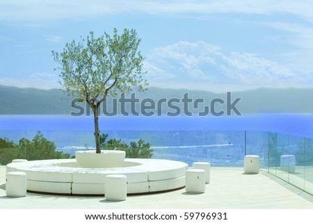 Nice patio with olive tree by the sea