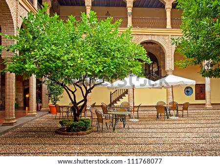 Nice patio with tree in Cordoba, Spain