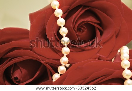stock-photo-nice-pearl-jewelry-set-and-red-roses-close-up-gold-earrings-and-necklace-in-the-flowers-wedding-53324362.jpg