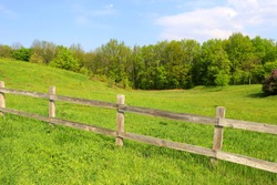 nice rural landscape with wooden fence on green meadow