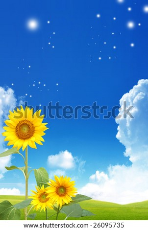 Nice spring picture with sunflowers