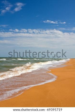 Nice summer landscape on seashore