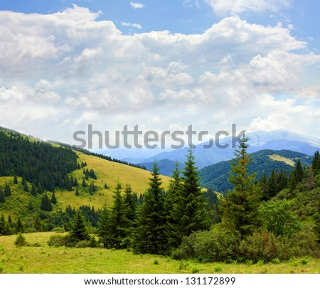 Nice summer scene in mountains