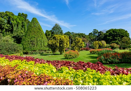 Nice sunny day in city park, take it in SriLanka #508065223