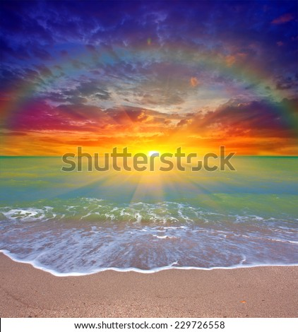 Nice sunset scene over sea #229726558