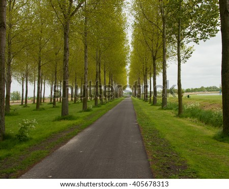 Nice to walk or bike in this peaceful park. Trees, grass are creating a great atmosphere. - Shutterstock ID 405678313