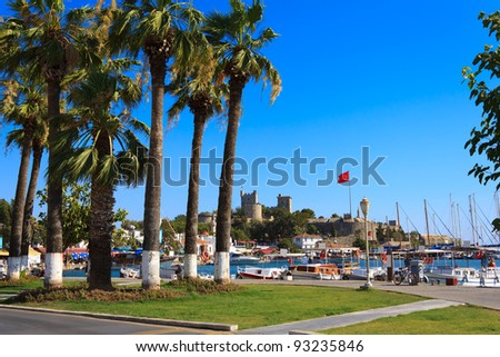 Nice view of the historic Bodrum Castle with palm trees