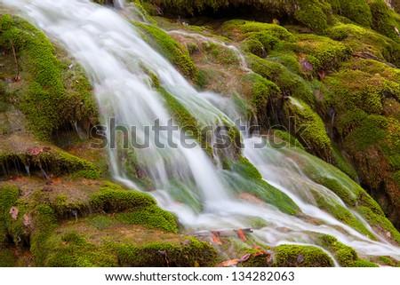 Nice waterfall with streams on green moss