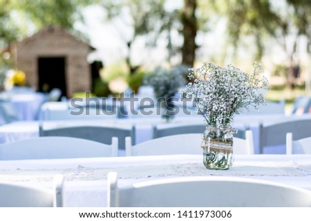 Nice white and natural garden party for wedding decoration or baptism decoration