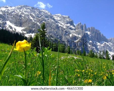 nice wiev in Italien Dolomites