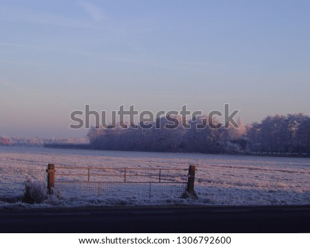 nice winter pics with snowy and frozen background, with nice coloring sky