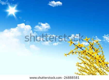 Nice yellow plant for your spring design