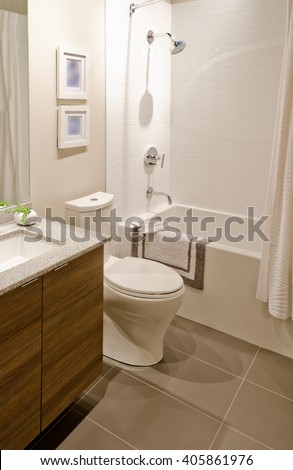 Nicely Decorated Modern Washroom Bathroom With The Toilet Sit Sink