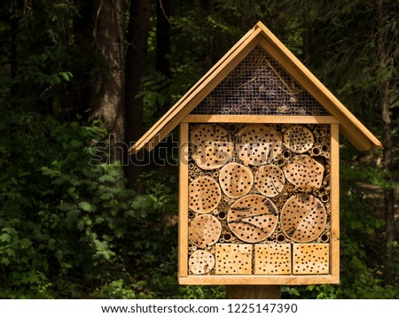 Nicely illuminated bug hotel with the forest in the background #1225147390